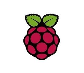 사물인터넷을 위한 라즈베리파이 개발 with Python