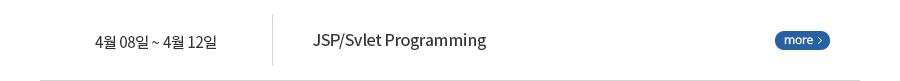 JSP/Svlet Programming