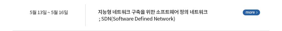 지능형 네트워크 구축을 위한 소프트웨어 정의 네트워크 ; SDN(Software Defined Network