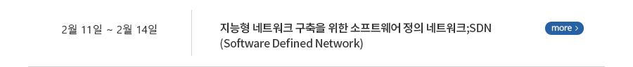 지능형 네트워크 구축을 위한 소프트웨어 정의 네트워크;SDN (Software Defined Network)